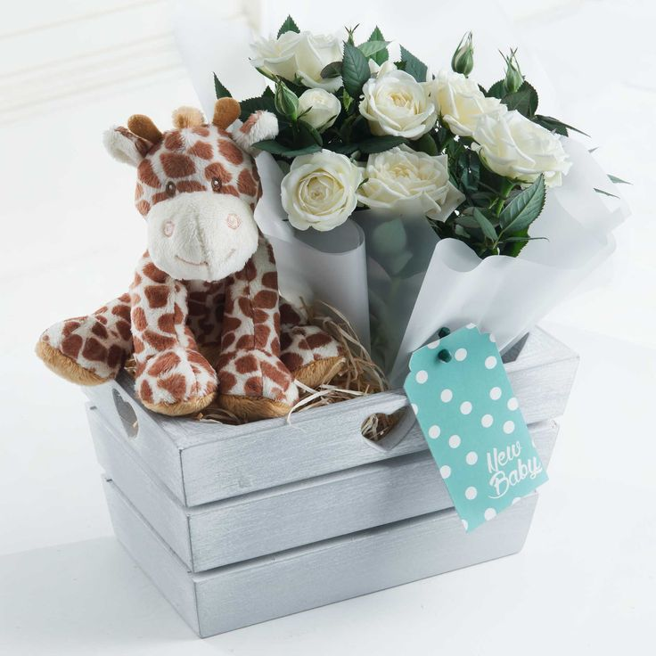 New Baby Gift with Giraffe Toy (White) - With a cute giraffe soft toy and white rose plant, this is an ideal way to share in the joy of a new baby