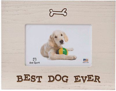 "Dog Speak ""Best Dog Ever"" Dog Picture Frame, 4 x 6 inches - Chewy.com"