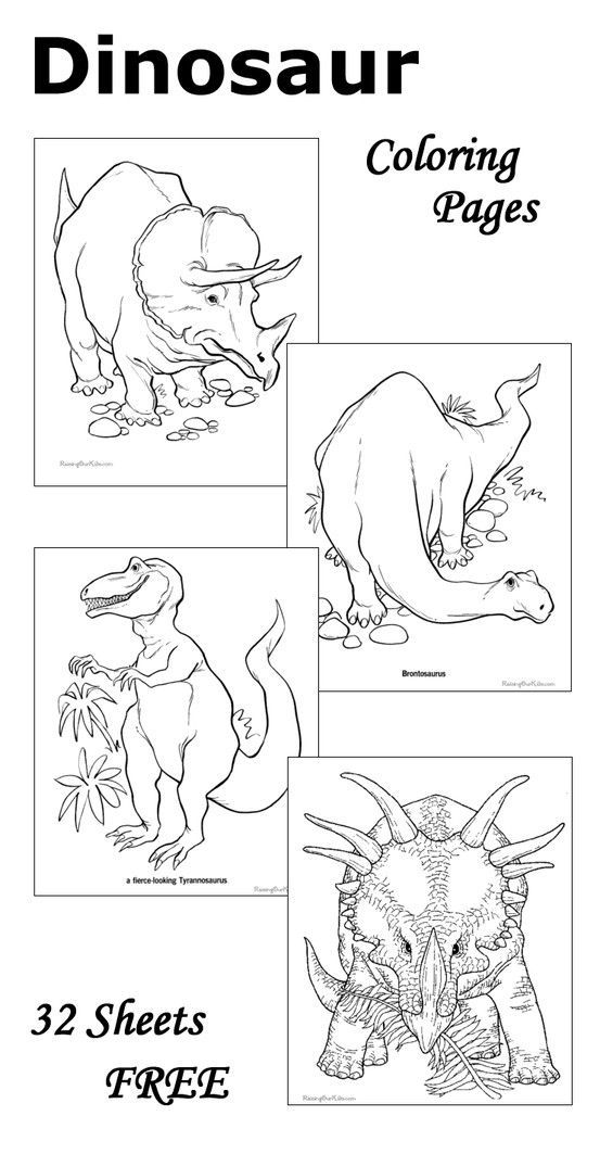 Dinosaur Coloring Pages - 32 free sheets to print and color.