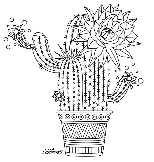 Cactus to color with Color Therapy. Try this app for Free! get.colortherapy.me