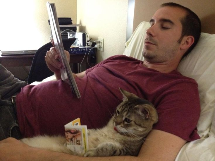 We like to read a little before bed...: Books Worms, Funny Cat, Reading Cat, Crazy Cat, Real Men, Funny Animal, Cat Reading, Cat Photos, Cat Lady