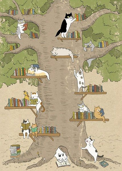 A Cat 'Library' Hangout