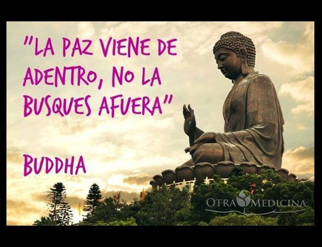 Frases De Paz P 2: 93 Best Frases Paz Interior Images On Pinterest