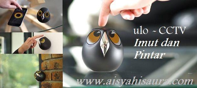 Bentuk seperti burung hantu, kamera CCTV pintar yang menggunakan konsep teknologi IoT ini dapat memonitor rumah atau kantor anda dari jarak jauh.