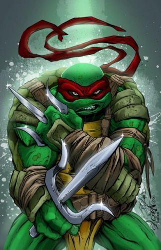 77 best images about teenage mutant ninja turtles on - Tortue ninja couleur ...