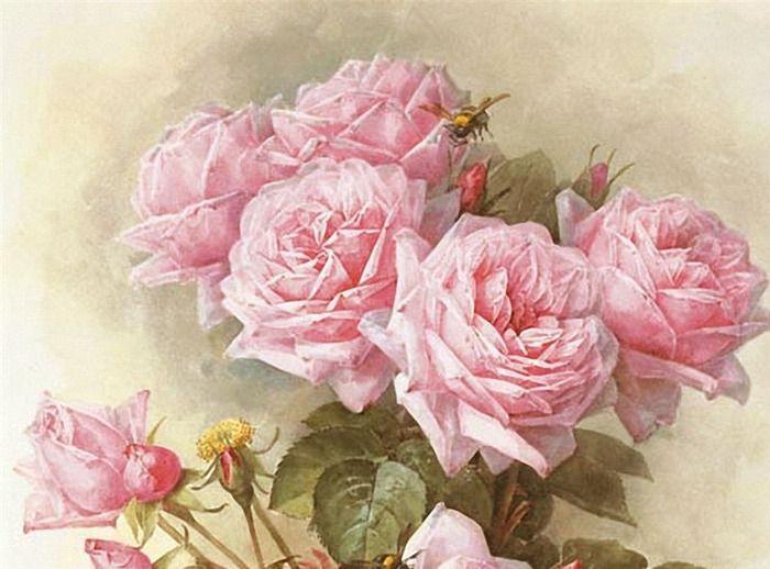 картинки розы в стиле шебби шик