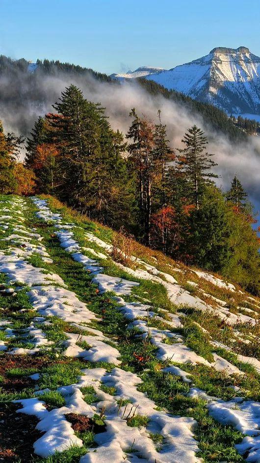Landscape - First snow.