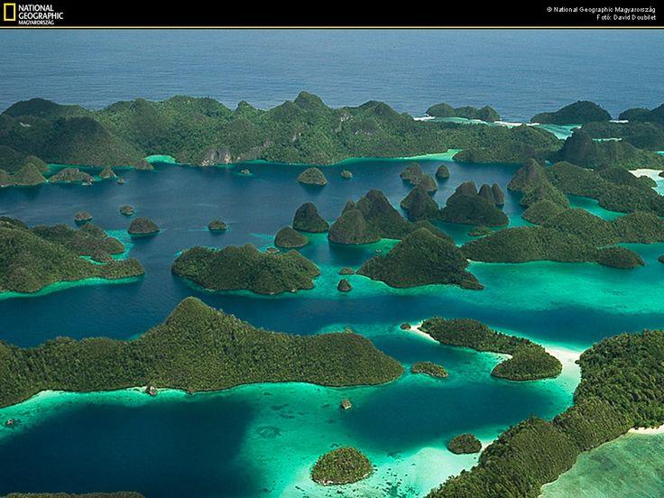 eM-Blog: Raja Ampat - Marine Tourism Exotic charm of Papua, Indonesia. Hopefully we get to travel there next year.