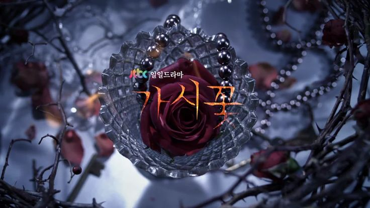 "JTBC Drama ""Thorn Flower"" Opening Title sequence on Vimeo"