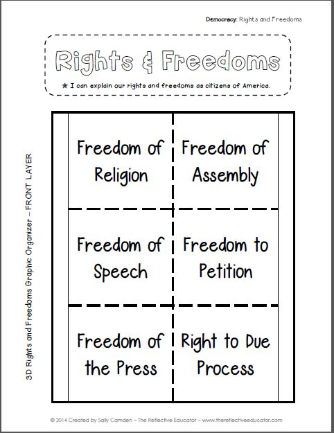 Best Bill Of Rights For Citizens Images On