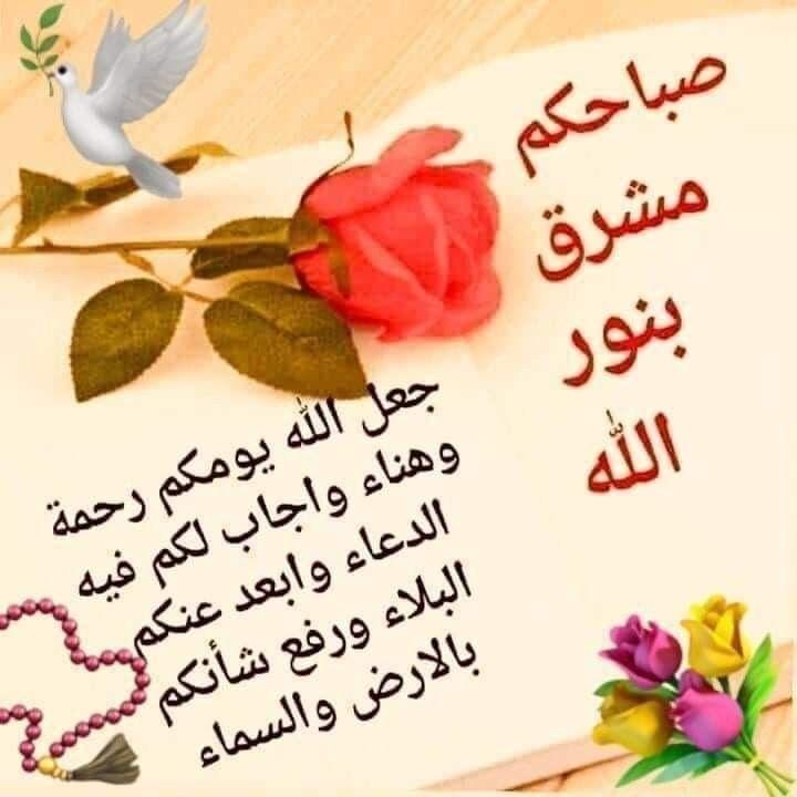 Pin By Mary On الصباح والمساء Good Morning Arabic Good Morning Gif Good Morning