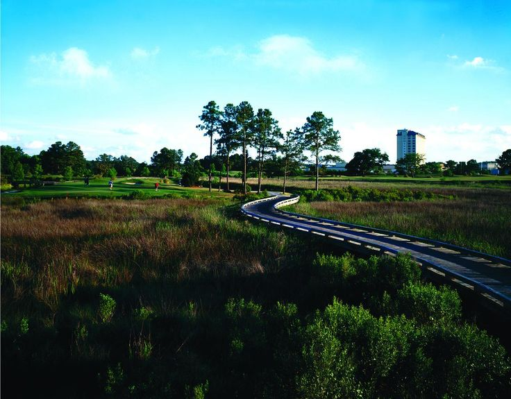 The Bridges Golf Club at #HollywoodCasino is #Mississippi's only #ArnoldPalmer /Ed Seay Signature golf course.