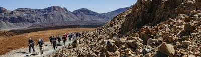 Tenerife Explored: Hiking Outdoor Activity - Different Levels Of Diff...