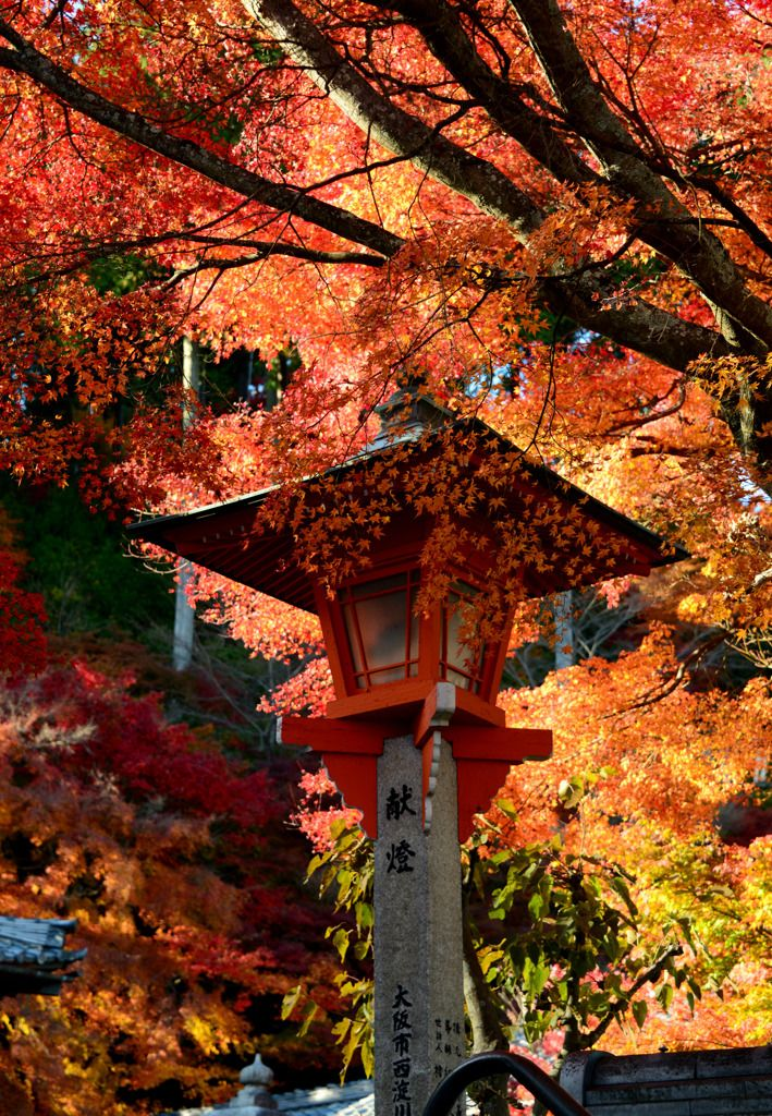 Yoshiminedera, Kyoto, Japan