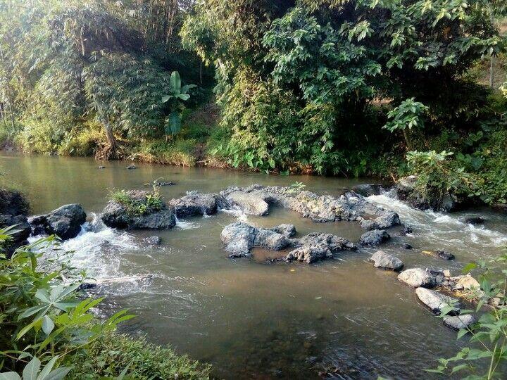 Sungai umbul klerregkan