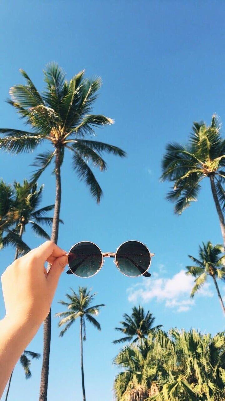 Image de summer, beach, and palm trees – #Fondd'écraniphone #Fondd'écrantélé…