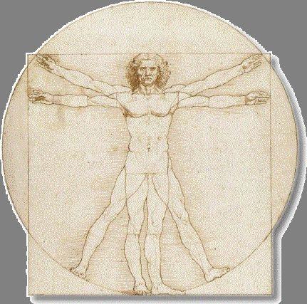 Proportion: DaVinci's 'Vitruvian Man'. Lesson plan for exploring the Golden Proportion.