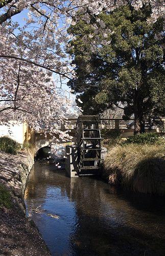 Christchurch's historic water wheel