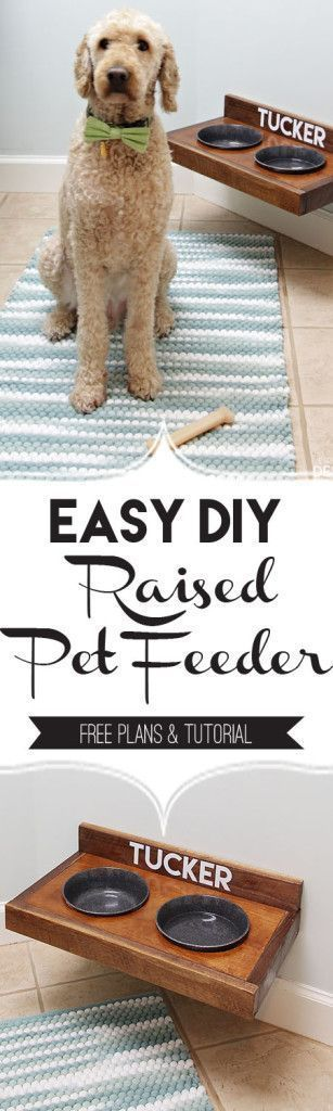 Raised Pet Feeder DIY/PaperDaisyDesign.com Build an easy pet feeding station for your dog or cat.