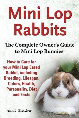 Mini Lop Rabbits, The Complete Owner's Guide to Mini Lop Bunnies, How to Care for your Mini Lop Eared Rabbit, including Breeding, Lifespan, Colors, Health, Personality, Diet and Facts: Amazon.co.uk: Ann L. Fletcher: 9781909820104: Books