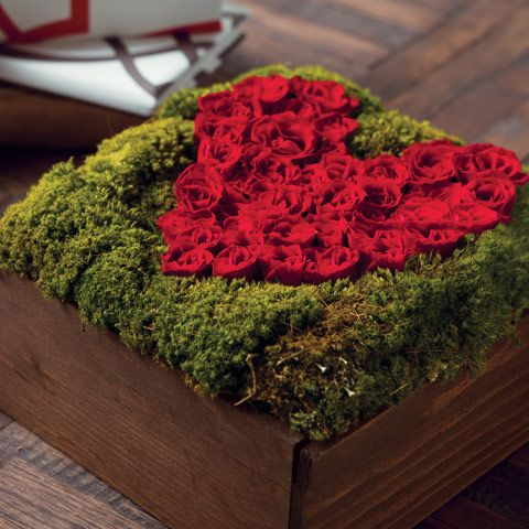 tiny red rosebuds surrounded by a bed of lush lichen moss and expertly arranged in a hand crafted wood box.