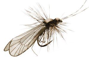 Fly Fishing Flies - J:son Realistic Wing Burner - Caddis