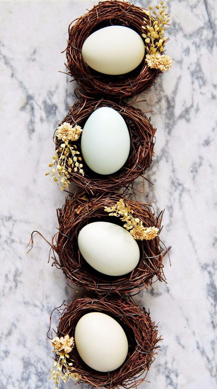 The prettiest row of eggs.