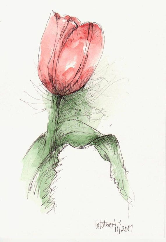 Tulip Original Art Watercolor Painting Pen and Ink Watercolor Flower Red Tulip H… – for teens