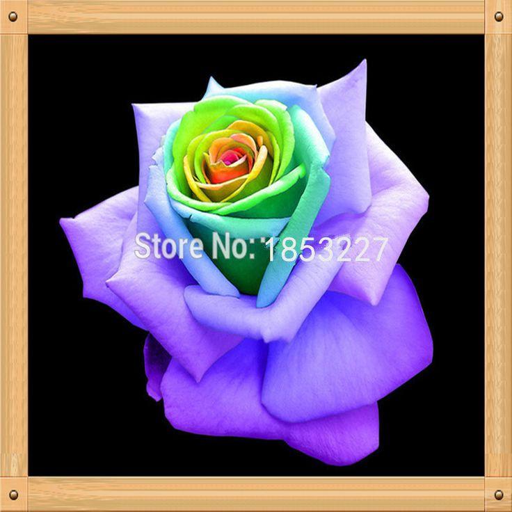 Картинки по запросу пурпурные тропические цветы