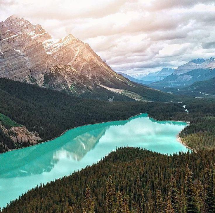 Peyto Lake, Banff, AB