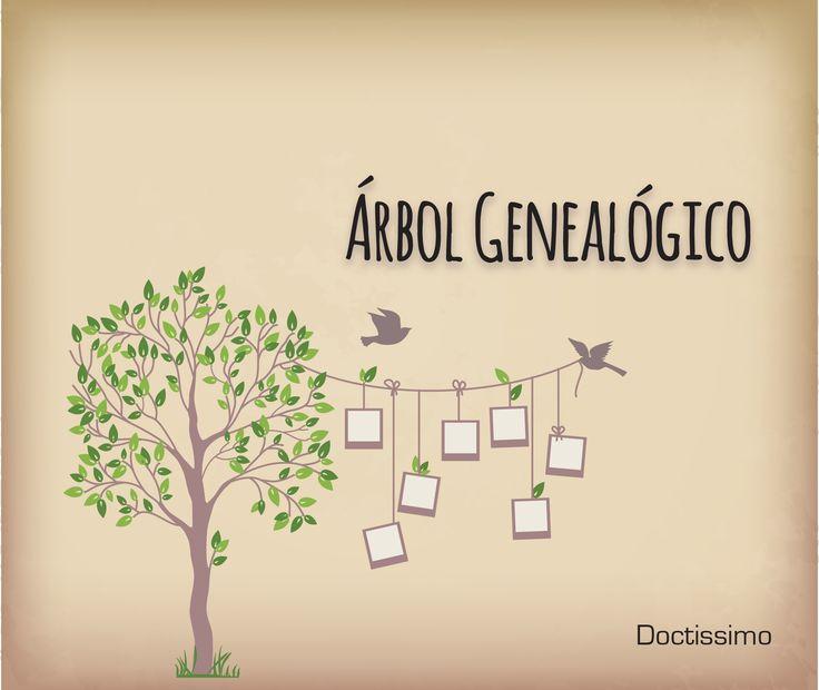 M s de 25 ideas incre bles sobre como hacer arbol - Ideas para hacer un arbol genealogico ...