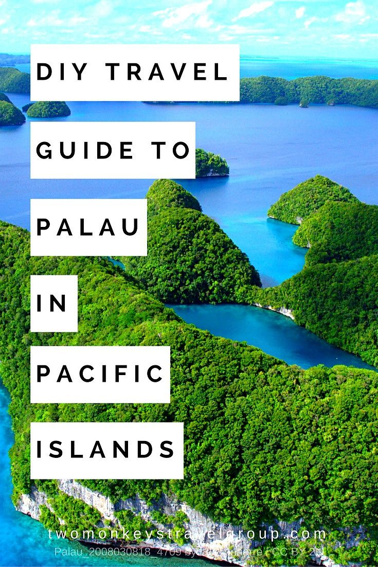 DIY Travel Guide to Palau in Pacific Islands Palau — Are you guys familiar with the novel of Michael Crichton's Sphere? (He is also the author of the Jurassic Park) This novel is a psychological thriller, a science fiction about alien spacecraft discovered in the depth of the ocean. To make the story short- there was a scene in the novel where the event happened involving sea creatures such as sea snakes, giant squids and of course, jellyfish.
