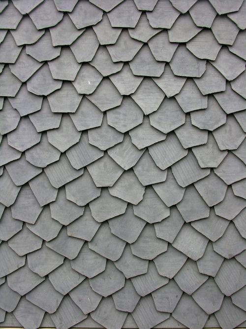 Texture écailles grises. -