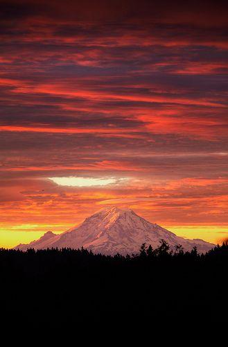 Mt. Rainier - Dawn View from Bainbridge Island  #his_orange