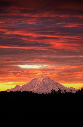 Mt. Rainier - Dawn View from Bainbridge Island  #his_orange