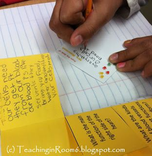 """Having the kids answer questions from the text book using a foldable, sticky notes, and doing a sort of """"gallery walk"""" helps the students to really dig into the text and get more out of """"just answering questions"""""""