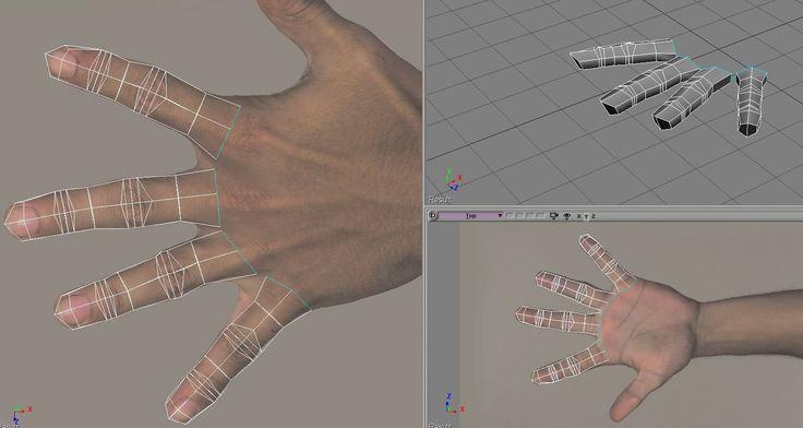human hand topology 1-1