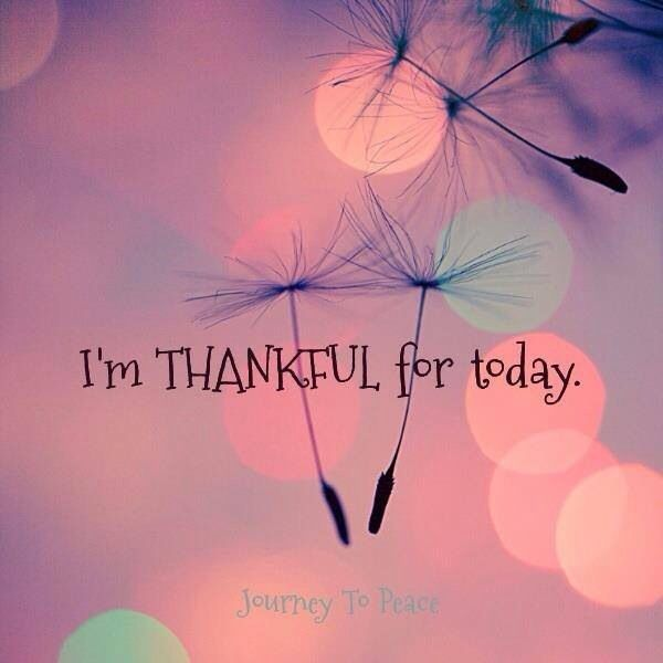 Thankful For A New Day Quotes: 25+ Best Being Thankful Quotes On Pinterest