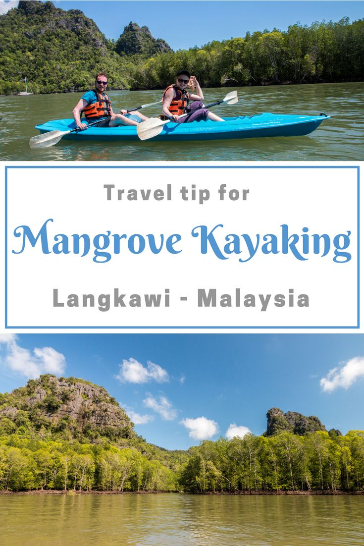 The Very unique trip by boat and kayaks to the mangrove forest in Langkawi in Malaysia.