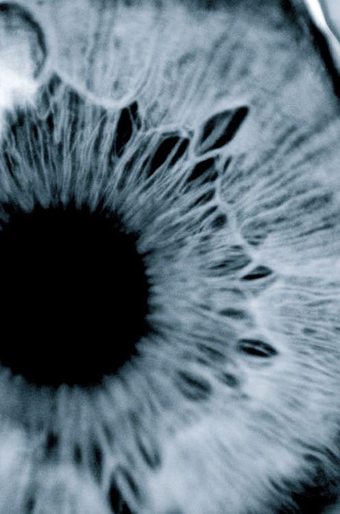Ich hätte nie gedacht, dass graue Augen so hart wirken können. Wie Granit, der dich zerdrückt.