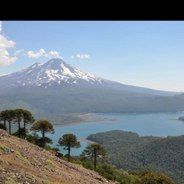 Conguillio, sur de Chile
