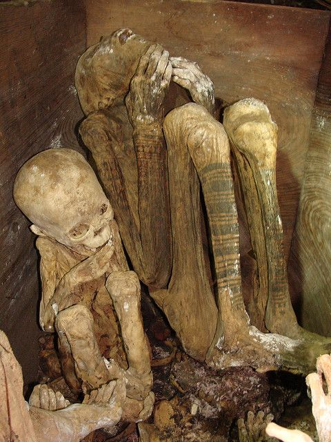 Mysterious Mummified Body Found on Mexico's Highest Mtn Displayed ...