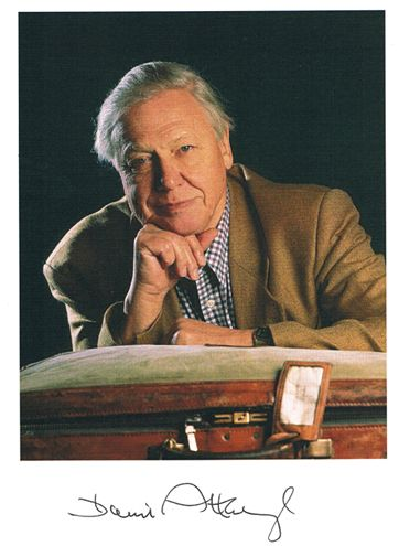 One of our heroes Sir David Attenborough - broadcaster and naturalist.