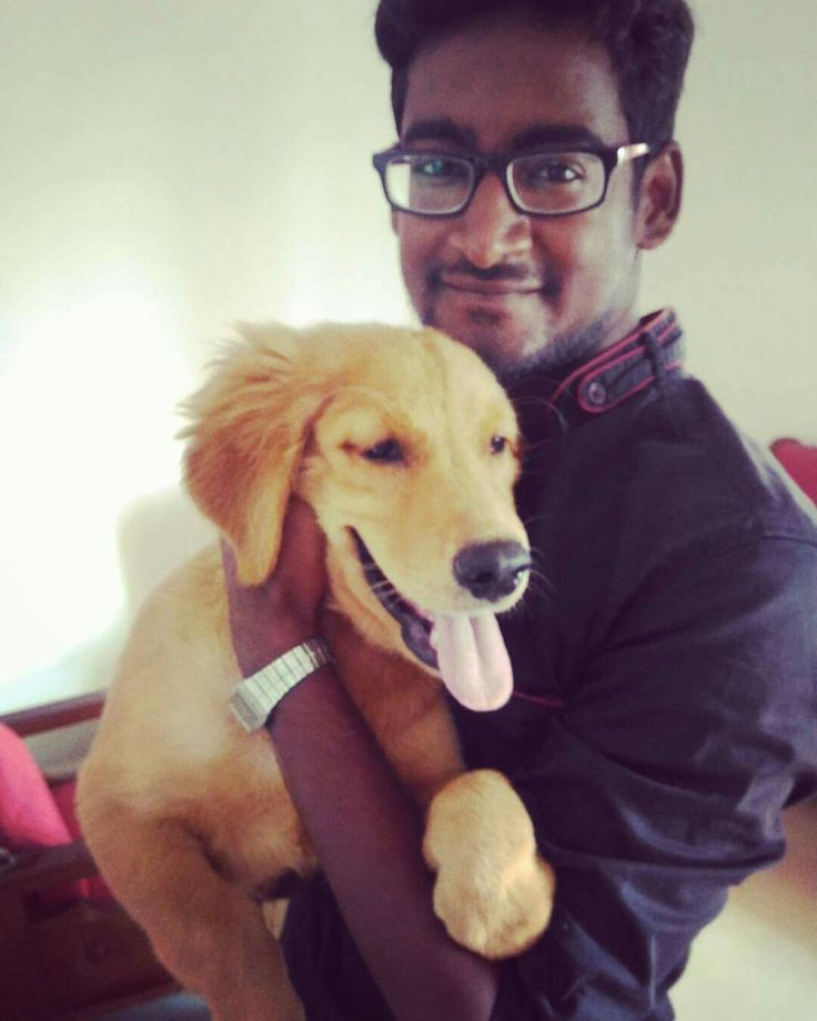 Well, just vaccinated this cute Golden Retriever Puppy today morning.... Had a good start for the day.... #goodstart  #goldenretriever #goldenretrieverpuppy #goldenbrown #goldenbrownbeauty #happyday #sunday #happysunday #VigeDr #coolvet #Veterinarian #veterinarydermatologist #versatilevet #chocolatebrownhandsome