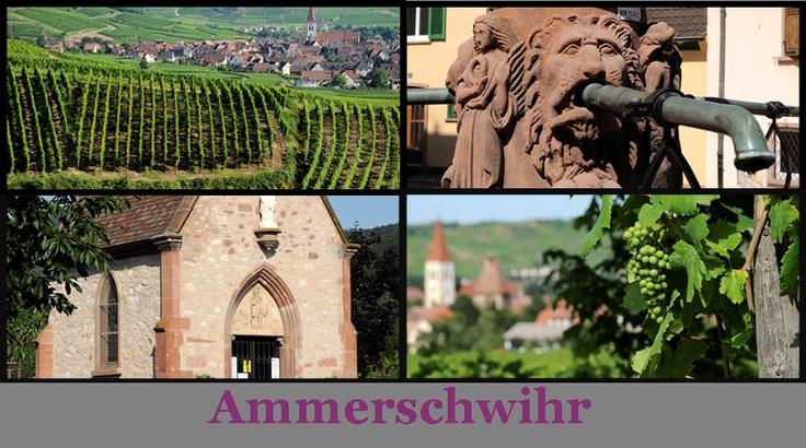 """Bienvenue sur le board """"Ammerschwihr"""" - Plus d'informations sur #Ammerschwihr sur http://www.kaysersberg.com/decouvrir/ammerschwihr.htm"""