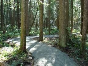 Hidden Grove Trail.   Length of trails vary from a short 15 minute walk to other trails of 3 - 4 km. in length, most a minimal challenge for walkers.  The entrance is approx. 4 km. past the Provincial Park in Sechelt Inlet.  This trail offers a unique combination of ancient giant trees, maple wetlands and rocky promontories.  Views of Sechelt Inlet and Vancouver Island.