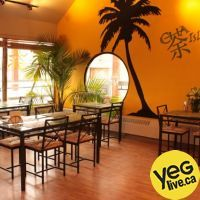 Cha Island Tea Co. is a relaxing, tropical themed tea and coffee lounge in the heart of Edmonton's trendy Whyte Ave. and Old Strathcona ...