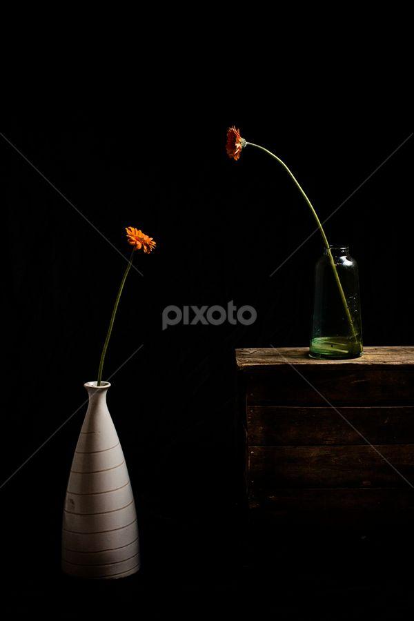 by Ahmad Torabi - Artistic Objects Still Life (  )