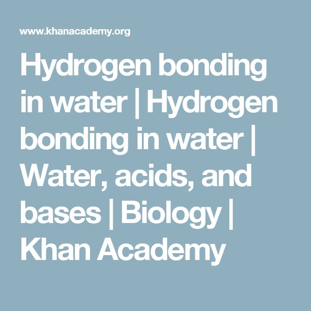 Hydrogen bonding in water | Hydrogen bonding in water | Water, acids, and bases | Biology | Khan Academy