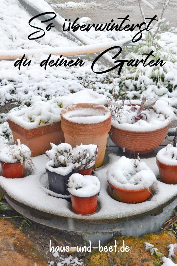 Es Ist Winter Was Gibt Es Im Garten Im Winter Zu Tun Haus Und